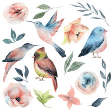 Watercolor Spring Birds And Fl...