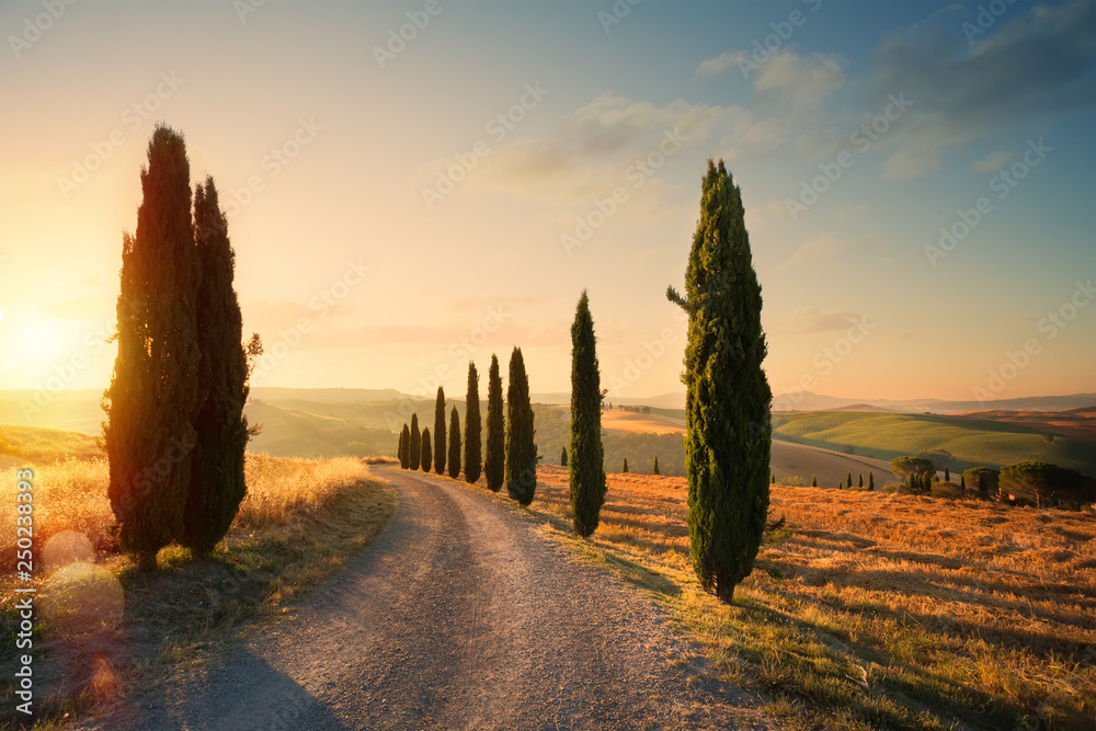 Fototapeta italy tuscany countryside rolling hills; summer farmland and country road;