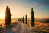 włochy toskania wieś faliste wzgórza; letnie pola uprawne i wiejskie drogi;
