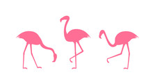 Set Of Pink Flamingo Silhouettes