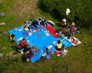 Japanese people sitting for picnic in park