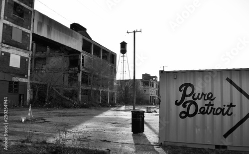 City of Detroit with dumpster with abandoned buildings withe a water tower and power lines in monchrome during the day outdoors Wallpaper Mural