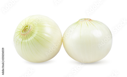 Fotografia onion isolated on white background. depth of field