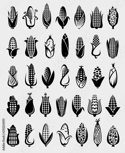 Corn set. Collection icon corn. Vector Tapéta, Fotótapéta