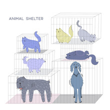 Adopt A Pet Vector Illustration Concept. Cats And Dogs Of Different Sizes In Cages In The Shelter Is Waiting For Adoption.