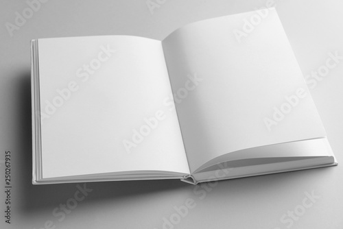 Fototapeta  Open book on light background