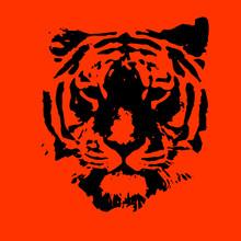Tiger Portrait For Print Vector