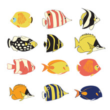 Vector Icon Set Tropical Reef Fishes. Vector Isolated Exotic Fish Characters. Colorful Butterflyfish, Clown Triggerfish, Damsel, Anemonefish, Clownfish, Angelfish. Hand Drawn Marine Underwater Animals
