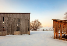 Rural Winter Farmscapes At Dawn, Utah, USA.
