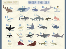 Vector English Alphabet On The Theme Of Sea Animals. The Name Of Marine Animals.