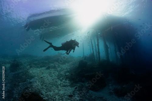 Fotobehang Duiken Diver under pier in Raja Ampat