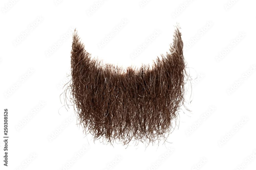 Fototapety, obrazy: Disheveled brown beard isolated on white. Mens fashion