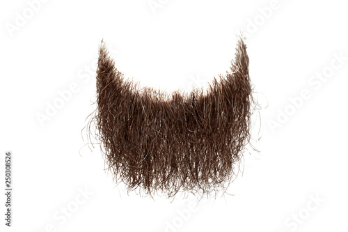 Fototapeta  Disheveled brown beard isolated on white. Mens fashion