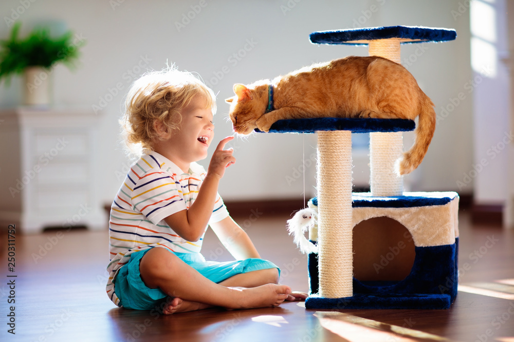 Fototapeta Child playing with cat at home. Kids and pets.