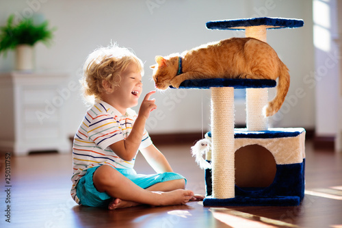 Obraz Child playing with cat at home. Kids and pets. - fototapety do salonu