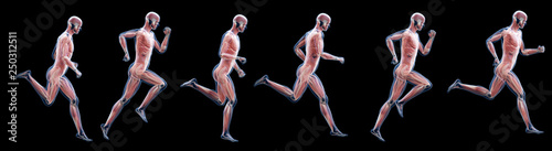 Photo 3d rendered illustration of a running mans muscles