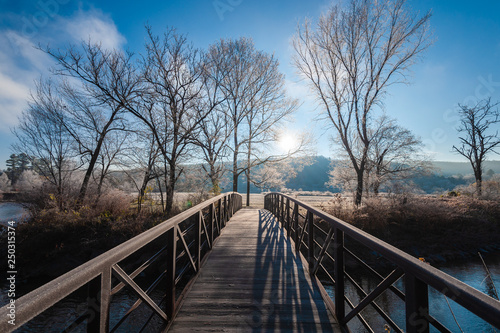 Fototapeta Stowe rec path walking bridge leading to frost covered trees, Stowe, Vermont, US