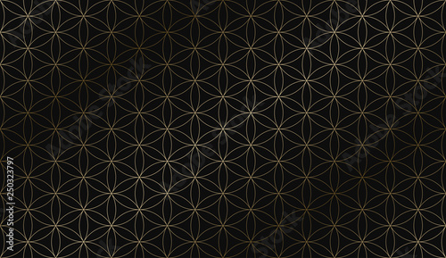 Foto auf Leinwand Künstlich Vector geometric art deco stylish pattern - seamless luxury gold gradient design. Rich ornamental background