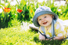 Baby In Green Grass Of Tulip F...