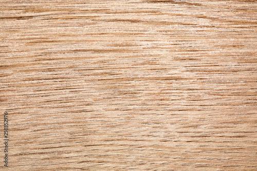 Obraz na plátně texture di fibre di legno