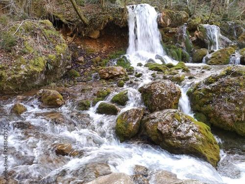 Fototapeten Forest river nor