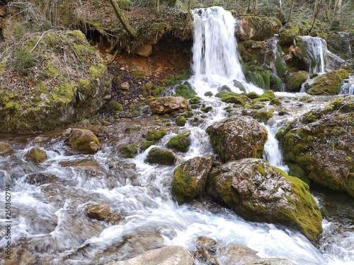 Fototapeten Forest river Wasserfall in Island Wildnis