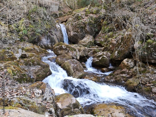 Fototapeten Forest river glasklare Wasserfälle in den Alpen