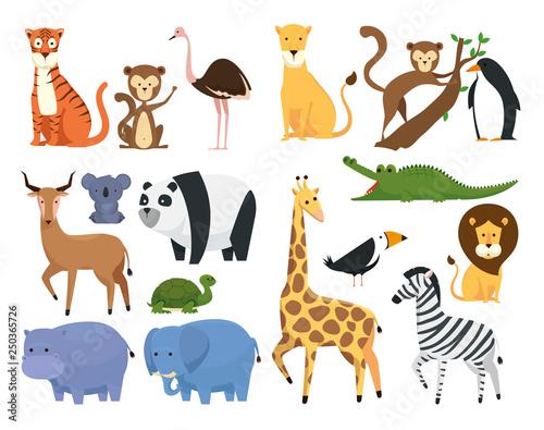 set wild animals in the zoo safari reserve #250365726