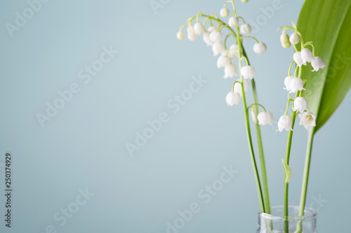 Wall Murals Lily of the valley lilies of the valley in a vase on a blue background