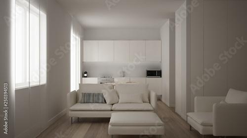 Minimalist white small kitchen design in one bedroom ...