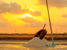 Heap Of Sea Salt In A Field Pr...