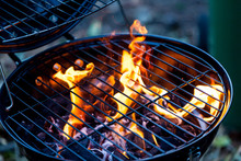 Barbecue Fire With Round Grill...