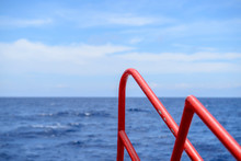 Red Ferry Fence And Blue Sea At The Sea