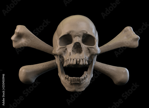Human skull on Rich Colors a White Isolated Background Wallpaper Mural