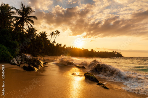 Fotografie, Obraz  Beautiful sunset on the beach with palms on a Caribbean island