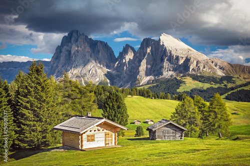 Photo Stands Europa Alpe di Siusi - Seiser Alm with Sassolungo - Langkofel mountain group in background at sunset. Flowers and wooden chalets in Dolomites, Trentino Alto Adige, South Tyrol, Italy, Europe