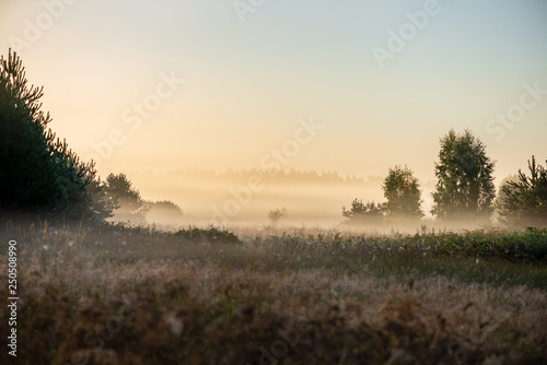 Printed kitchen splashbacks Beige colorful sunrise sunset in misty summer meadow