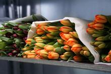 Bunch Of Tulips Lying On Storage Shelf In Florist Store.
