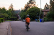 Rear view of boy riding bicycle on road against sky during sunset