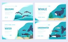 Set Of Sea Mammals. Art Animal...