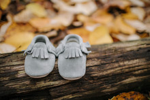 Close-up Of Gray Baby Booties On Fallen Tree In Forest During Autumn