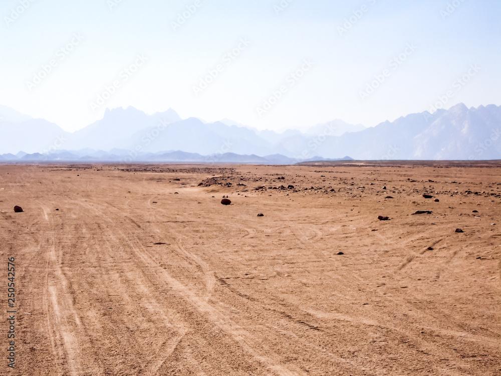 Fototapety, obrazy: Egyptian desert beginning of the desert sugar in Egypt