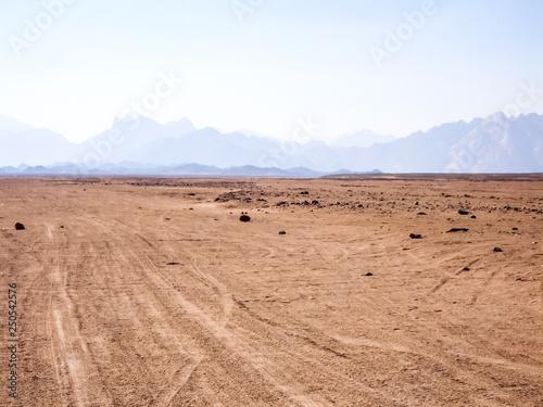 Obraz Egyptian desert beginning of the desert sugar in Egypt - fototapety do salonu