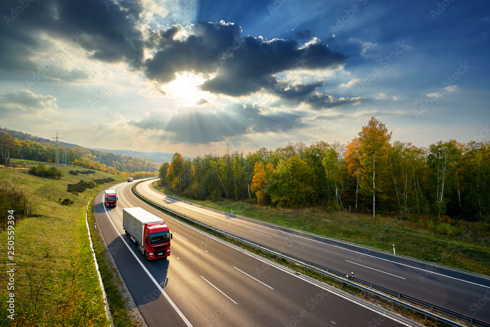 Fototapety, obrazy: Three red trucks driving on the asphalt highway between deciduous forest in autumn colors under the rays of the sunset and dramatic clouds. View from above.