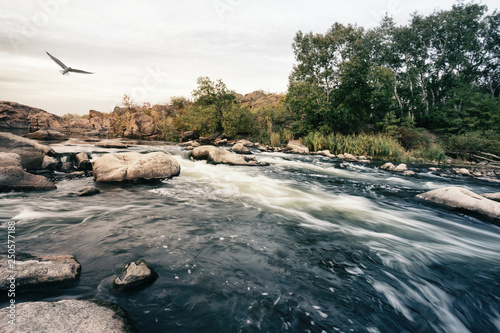 Rzuć się na górską rzekę płynącą wśród kamieni