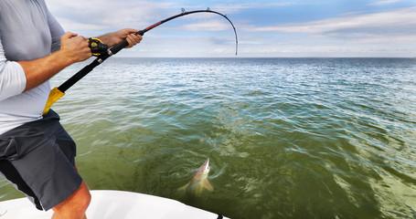 Čovjek ribar iz sportskog ribolova koji izvlači morskog psa konja. Velika igra plave vode riba ulov i puštanje. Turistička aktivnost brodom na moru.