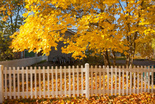 Beautiful Colorful Autumn Scene With Bikes, White Fence And Fall Colors In Finland.