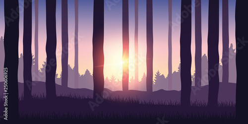 Fotografie, Obraz  purple forest nature landscape backgound with sunshine vector illustration EPS10
