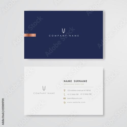 Cuadros en Lienzo Blue business card flat design template vector