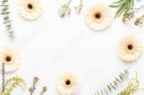 Spring greeting card, pastel color gerbera flowers on the white background.